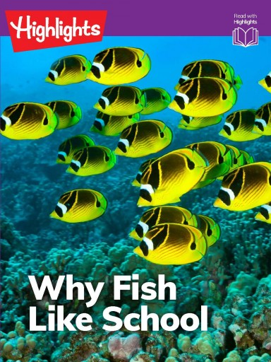Why Fish Like School